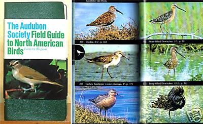 Audubon+East+3